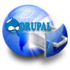 Hosting Drupal Business